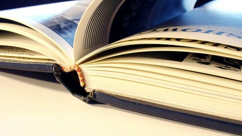Tema para Monografia de Letras - Português e inglês